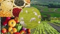 Fonte: Confederação Nacional de Municípios A partir de agora existem dois procedimentos para adesão ao Sistema Unificado de Atenção a Sanidade Agropecuária (Suasa). Os Municípios da Bahia, Goiás, Minas Gerais, […]