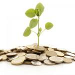Municípios podem ser beneficiados com o Pagamento por Serviços Ambientais (PSA)