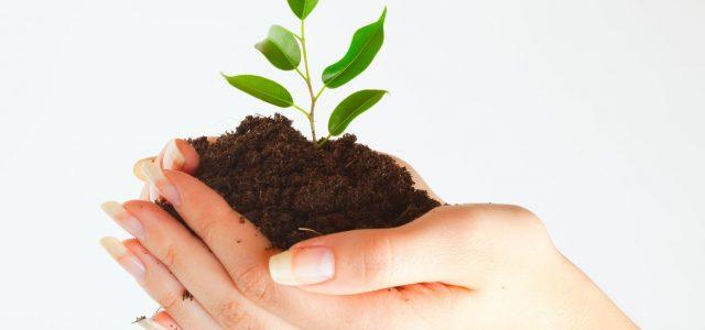 Fonte: Confederação Nacional dos Municípios Para capacitar gestores ambientais, o Ministério do Meio Ambiente lançou na última sexta-feira, 9 de dezembro, o Programa Nacional de Capacitação de Gestores Municipais. O […]